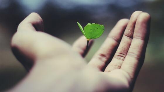 Osobný rast a sebavedomie